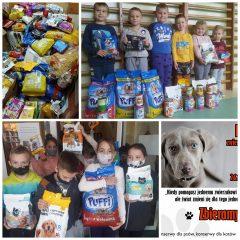 Centrum Wolontariatu w Podolanach podliczyło tegoroczną zbiórkę karmy dla bezdomnych zwierząt