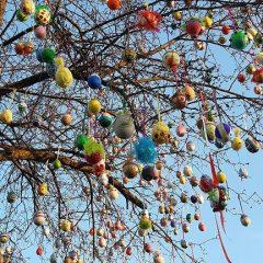 """""""Drzewo Wielkanocne"""" cieszy oczy"""