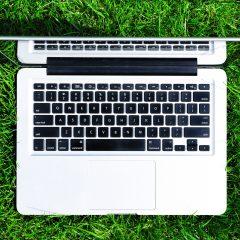 ARiMR: Trwa kampania dopłat 2021 – wnioski tylko przez internet